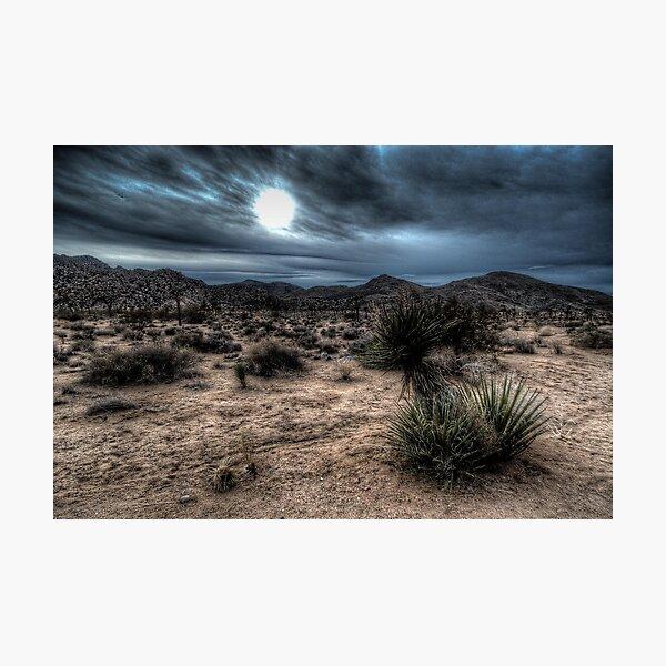 Joshua Tree National Park Sunset Photographic Print