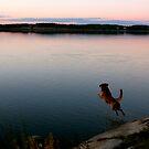 Jump by LadyFi