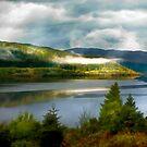 Loch Sunart by Brian Tarr