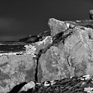 Back Light - Prieshach Cove (Black & White) by Blackgull