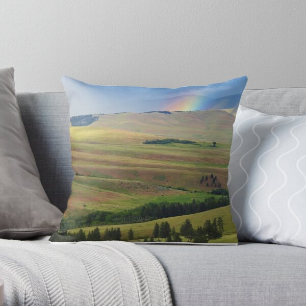 Storm on Irvine Flats Throw Pillow