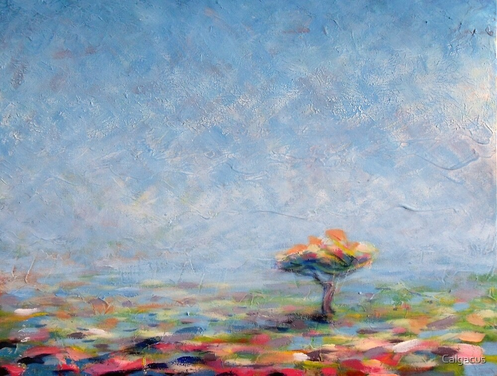 A tree in the west  by Calgacus