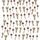 Mushrooms  by Manitarka