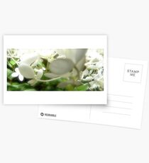 Fairy Land Night Scapes- Fairy Snow Ball Postcards