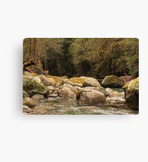 Goodell Creek #2 Leinwanddruck