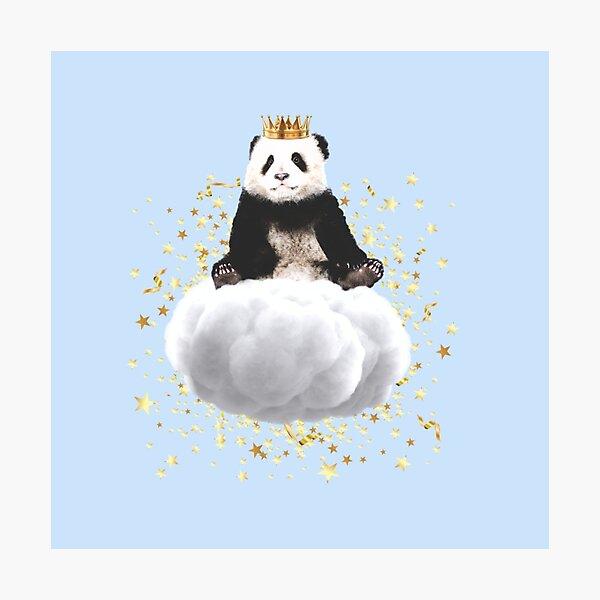 Panda cloud with the stars Photographic Print