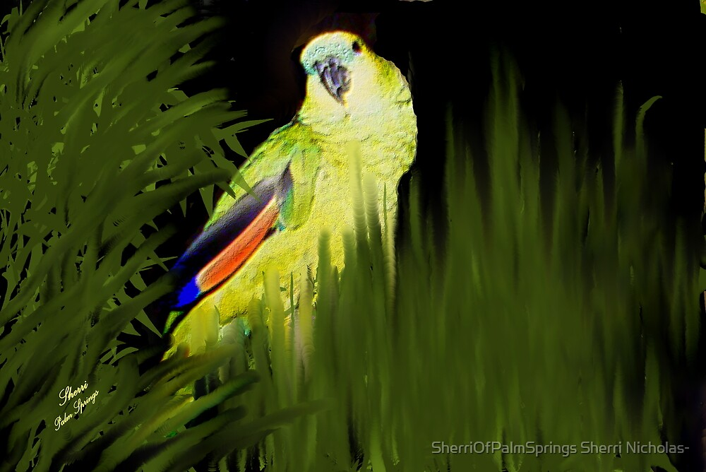 MY JAZZ... The Singer!!..got to watch the parrot singing by SherriOfPalmSprings Sherri Nicholas-
