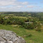 View from Combestone by kalaryder