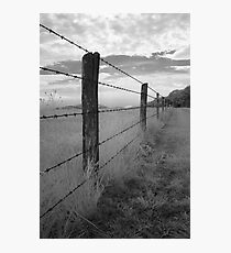 Barbed - Blue Ridge Parkway Photographic Print
