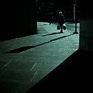 shadowland by Tony Day