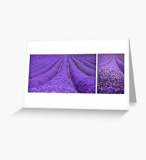 Lavender diptych Greeting Card