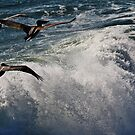 Gone with the Waves by fototakerTony