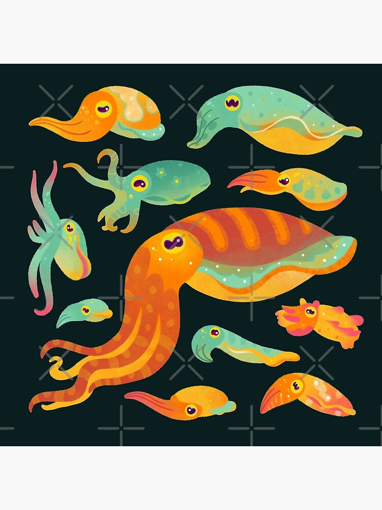 Cuttlefish - dark by pikaole