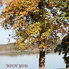 Picnic in the Fall (2) by DebbieCHayes