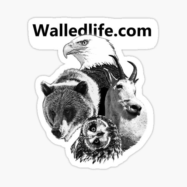 Walledlife.com Sticker