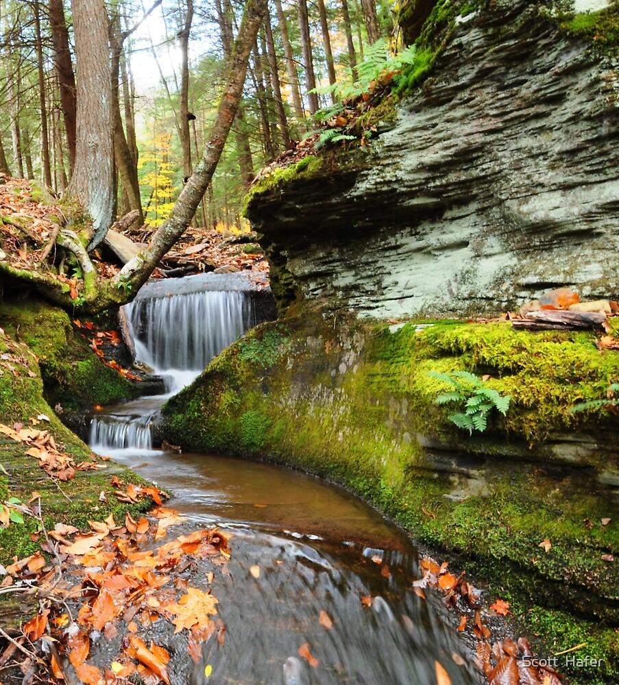 Peaceful Flow by Scott  Hafer