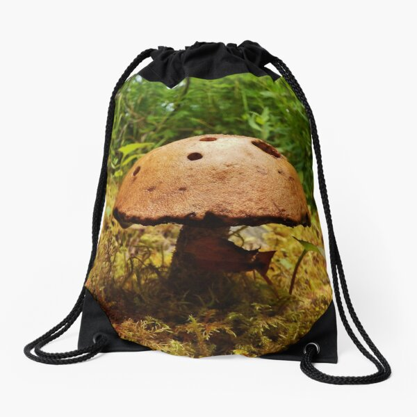 Alaska Mushroom - unidentified type Drawstring Bag