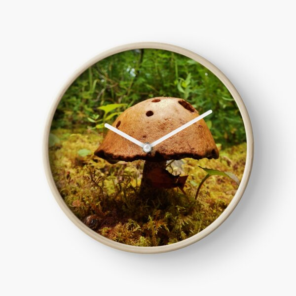 Alaska Mushroom - unidentified type Clock