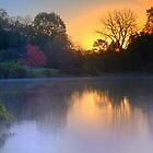 Foggy Fall Sunrise by John Absher
