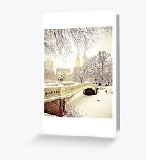 Winter in Central Park Greeting Card
