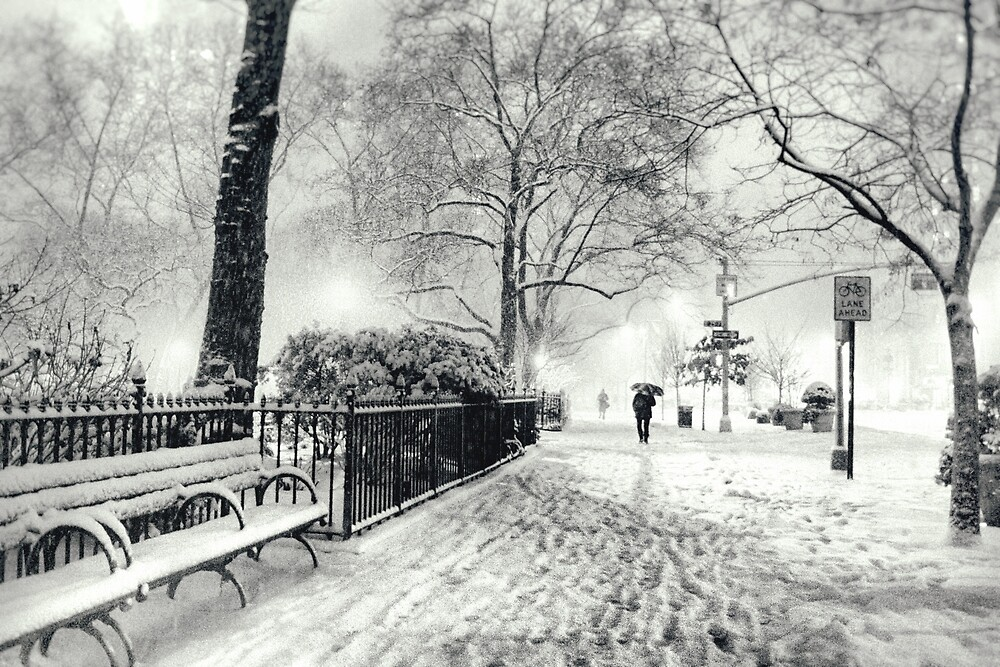 Winter Night - Madison Square Park - New York City by Vivienne Gucwa