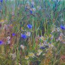 the windy meadow by leapdaybride