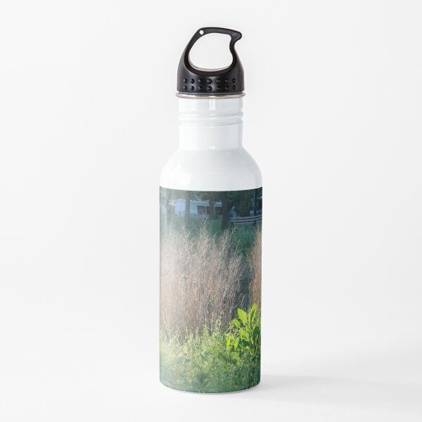 Abstract,pattern,psychedelic,twist,decoration,repetition,creativity Water Bottle