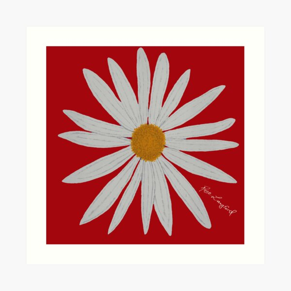 WHITE DAISY RED Art Print