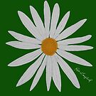WHITE DAISY GREEN by RoseLangford