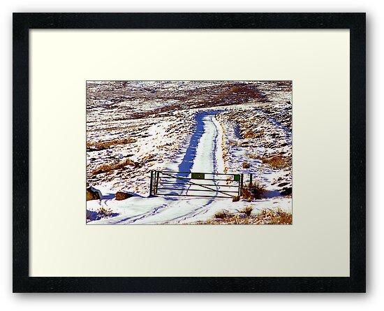The Gate by Trevor Kersley
