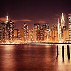 New York City - Night by Vivienne Gucwa