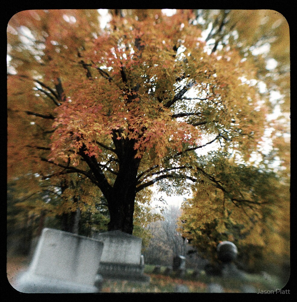 TTV-the cemetery by Jason Platt