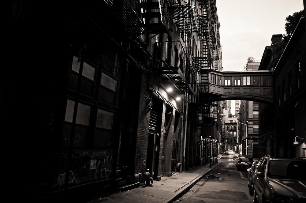 Staple Street Skybridge - New York City by Vivienne Gucwa