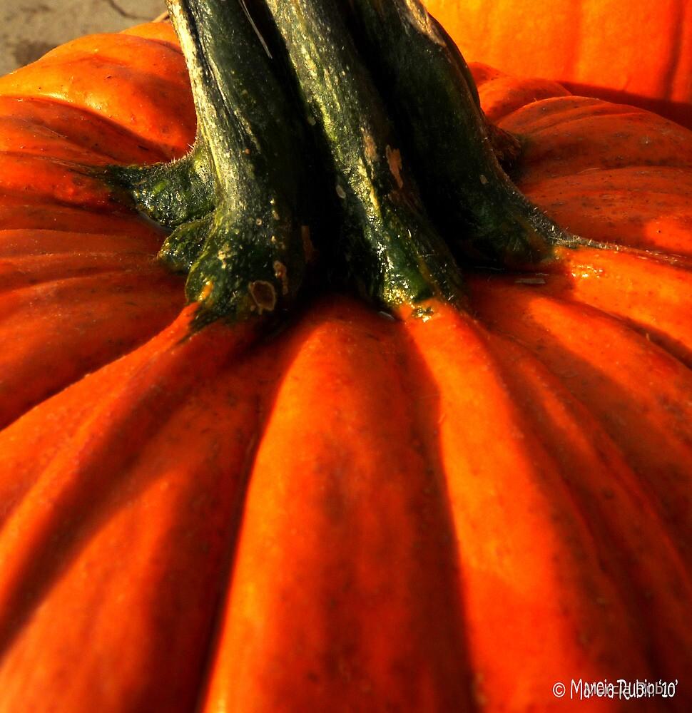 Big Pumpkin by Marcia Rubin