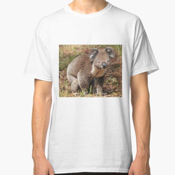 Koala on the ground Classic T-Shirt