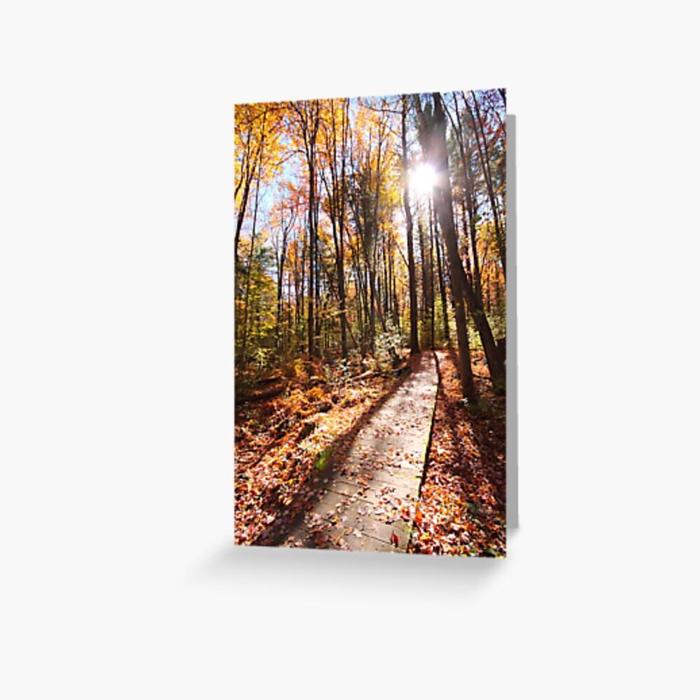 Forest Boardwalk Greeting Card