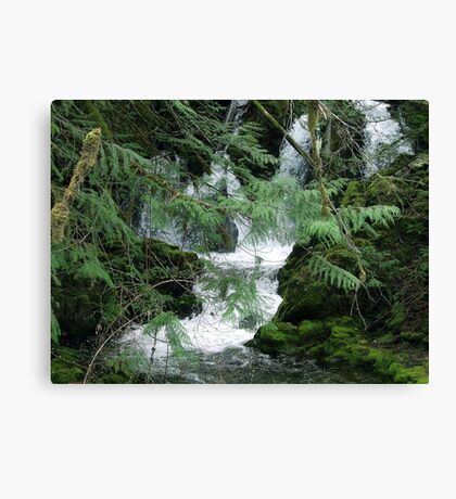 Koksilah River Falls Canvas Print