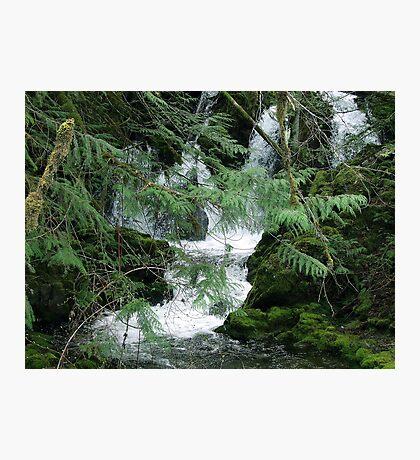 Koksilah River Falls Photographic Print
