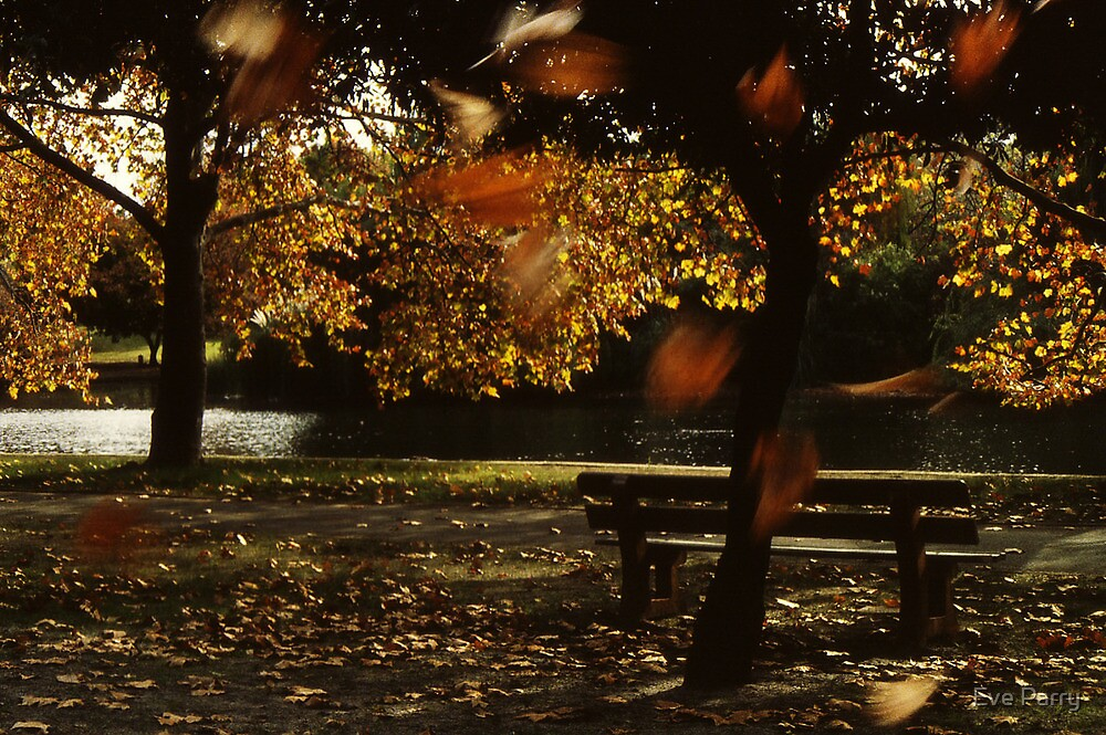 Autumn Concerto by Eve Parry