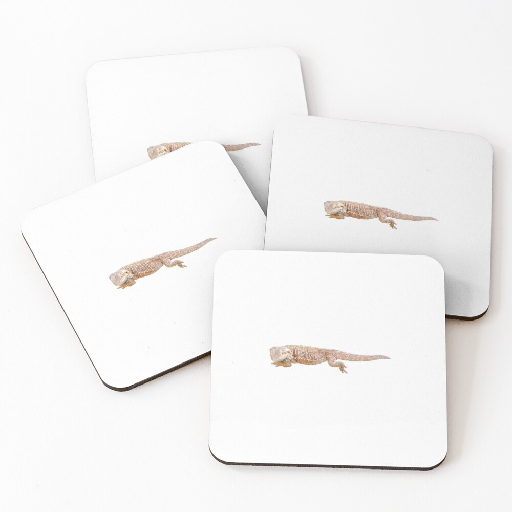Bearded Dragon Chilling Coasters (Set of 4)