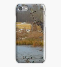 Waterfowl iPhone Case/Skin