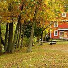 War Eagle Autumn by NatureGreeting Cards ©ccwri