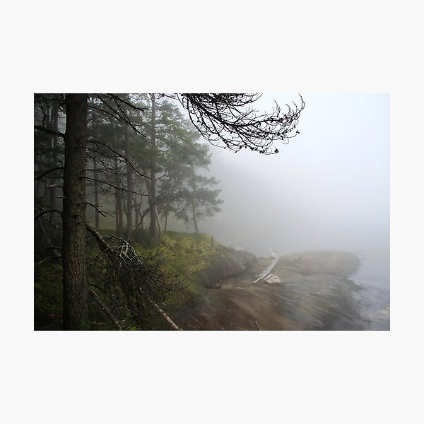 Fogged In Photographic Print