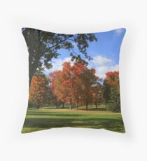 Fall At Lake Ontario Park Throw Pillow
