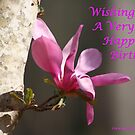 Japanese Magnolia Birthday Wish by DebbieCHayes