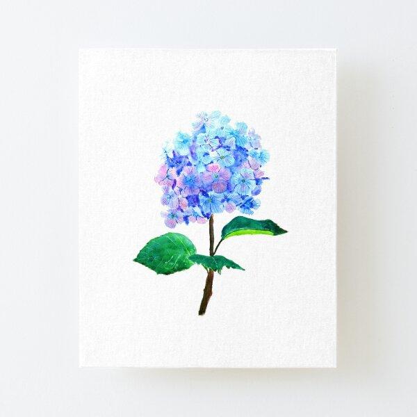blue purple hydrangea flower  Canvas Mounted Print