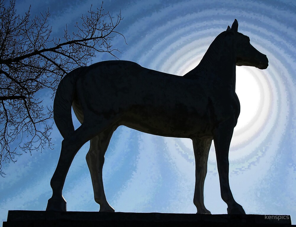 White Horse - Silhouette by kenspics