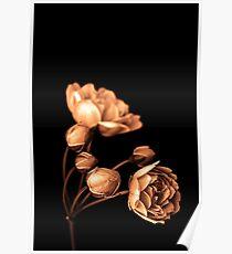 """""""Sepia Rose"""" Poster"""