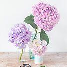 Purple Hydrangea still life in pastel hues by Zoe Power