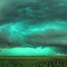 Beast of Green - HDR Panorama by Evan Ludes
